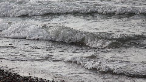 Östersjöns vågor och strand