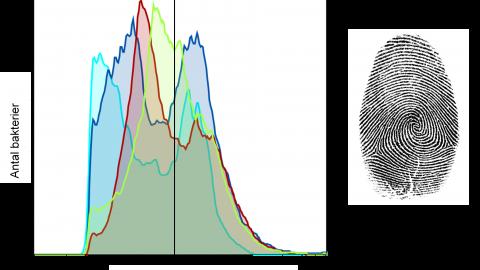 Fingeravtryck från fyra olika typer av vatten där de olika färgerna avser vattentyp.