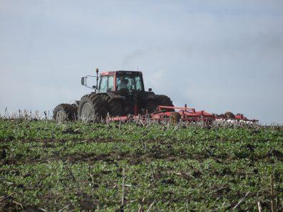 Traktor sprider slam på åker